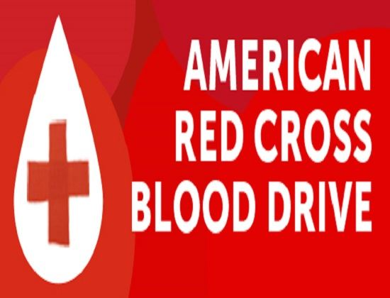 cropped blood drive